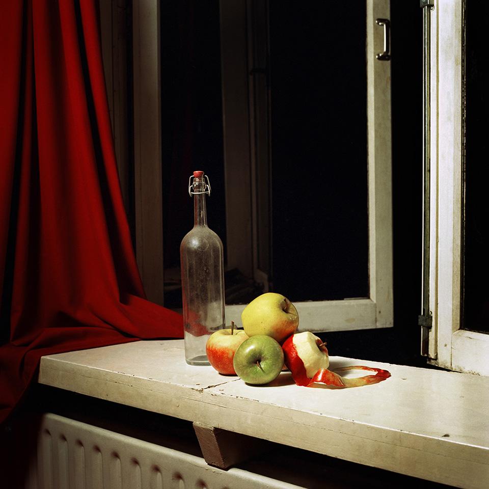 Vanitas #10 by David Galjaard